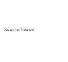 Nosník palet 66 x 84 mm, 1650 daN 2310-2590mm, pro lištu kombi 13 x 61 mm